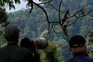 5 day safari in rwanda