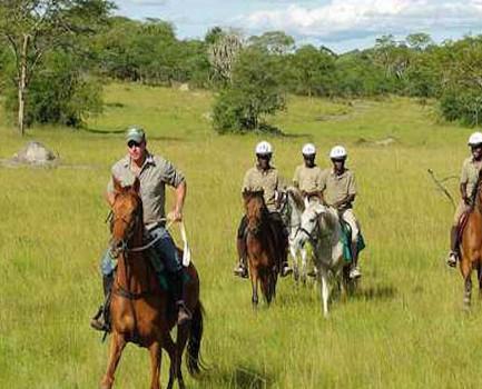 horsebacksafari