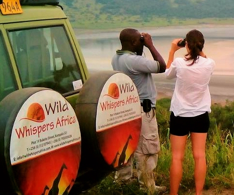 murchison falls viewing